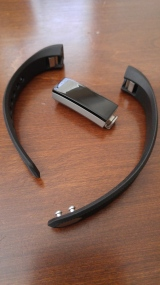 Module and sport band