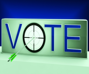 Vote Target Means Evaluation Poll Election